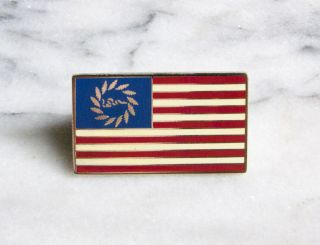 Grateful Dead Join or Die American Flag Lapel Pin