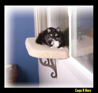 Perch★ Perfect Color for All Decor Scratching Condo Cat Bed