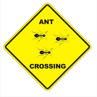 Ant Crossing Caution Yellow Fence Yard Sign   Aluminum Great Gift 18