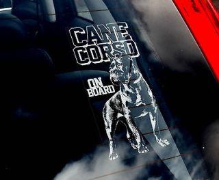 Cane Corso   Car Window Sticker Sign   Corz Molosser Dog   n.Collar