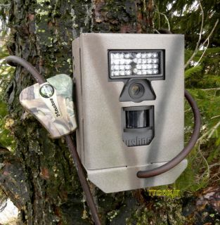 Camlockbox Bear Safe Lock Security Box Fits Bushnell Trophy Cam