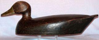 RARE FRED CROFT 1880 1963 BLACKDUCK DUCK DECOY BELLEVUE ONTARIO CANADA