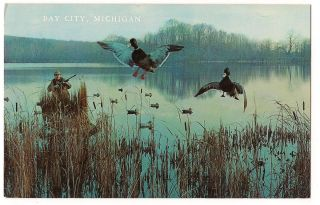 DECOYS Duck Hunting Bay City Michigan BIRD POSTCARD Unused FREE SHIP