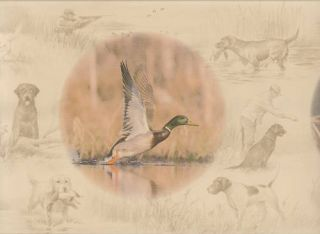 Ducks Unlimited Wildlife Sale$6 Wallpaper Border 15