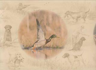 Ducks Unlimited Wildlife Sale$6 Wallpaper Border 15