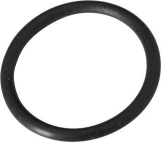 Summer Escapes Filter Pump Retainer Nut O Ring