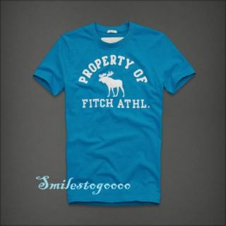 Abercrombie AF Mens GraphicTee Shirt Calamity Pond White/Blue T shirt