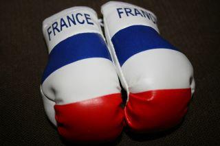 France French Flag Mini Boxing Gloves New