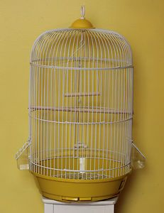 Cage Bird New for Parakeet Canary Parrot Round Cage Real Wood Yeliow