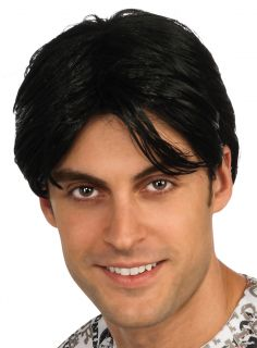 Charlie Sheen Two and a Half Men Halloween Costume Wig Adult