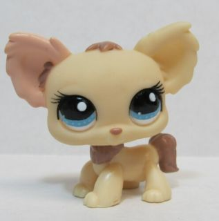 littlest pet shop cream chihuahua dog 1171 he is in very good used