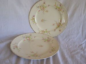 Vintage Crooksville China Spring Blossom Dinner & Lunch Plate Shabby