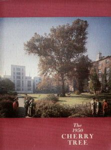 College Yearbook George Washington University Cherry Tree 1950