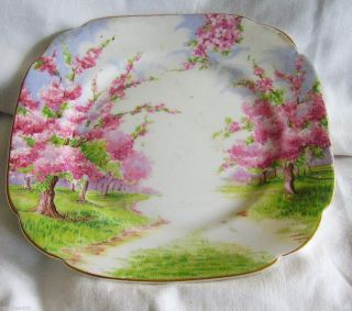 ROYAL ALBERT BLOSSOM TIME PLATE~FINE CROWN CHINA BREAD &BUTTER SMALL