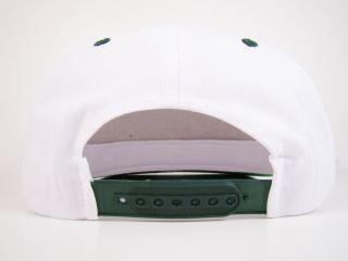 Snapback Hat White Script Logo Coco Crisp American Needle MLB