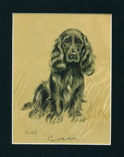 Vintage Dog Print 1937 Black Cocker Spaniel by Lucy Dawson