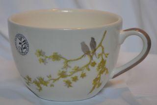 Coffee Tea Cup Mug Matceramica Portugal Birds Sitting on Branch Tree
