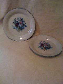 Home and Garden Party pottery stoneware floral dinner plates