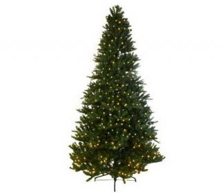 Mr. Christmas Wisconsin Fir 6.5Pre Lit LED Tree with 5 Year LMW