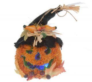 Fiber Optic Color Changing Pumpkin Head w/ Straw Hat —