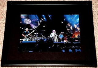 Pink Floyd Reunion David Gilmour Roger Waters Live Framed Portrait
