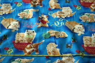 Fluffy Kittens Kitty Cat Playing Print Cotton Fabric