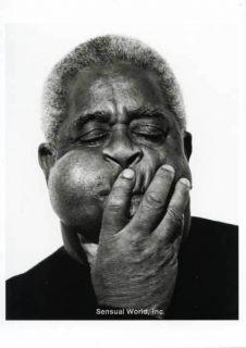 Jazz Musician Dizzy Gillespie Herb Ritts Photo Postcard