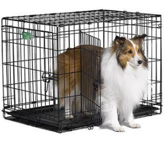 New 30 Double Door Dog Crate w Divider Icrate 1530DD