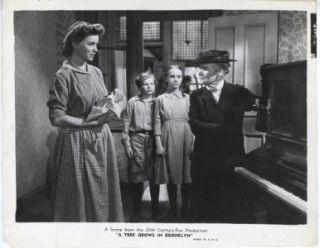 in Brooklyn Orig Still Dorothy McGuire and Cast Academy Award