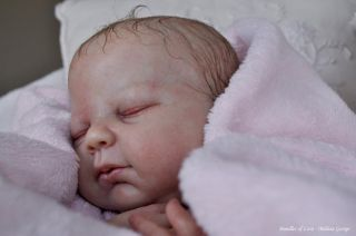 Reborn Baby Doll Kit Sienna by Denise Pratt Free Doe Suede Body