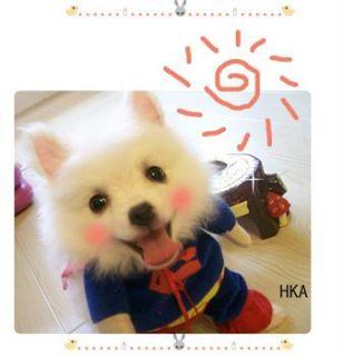 Size Christmas superman shirt Hoodie Tee small dog pet clothes Apparel