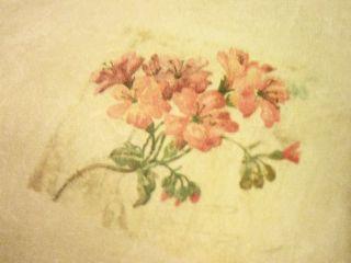 Sweetwater Wallpaper Tan Flowers Red Orange Yellow Dragon Flies
