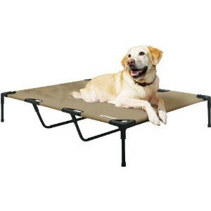 Elevated Raised Pet Dog Bed Cot Extra Large 48x36x9 XL