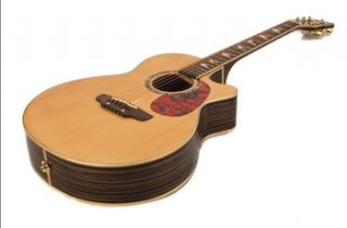 Acoustic Electric Guitar Single Cutaway Mother of Pearl Dove Inlays