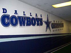 Pink Dallas Cowboys Signed Autographed Helmets Cowboys Romo Witten