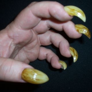 Fake Claws Finger Nails Werewolf False Fingernails