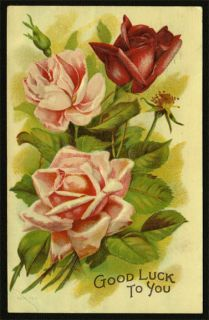 1909 Antique Pink Roses Greetings Postcard Taylor Fitchburg Orange MA