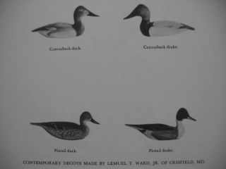1947 Duck GOOSE Hunting Decoy Call Winchester Remington Prints HB DJ
