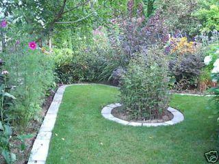 Large Concrete Garden Edging Lawn Landscape Mold Lot