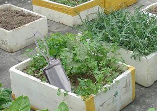 Stainless Steel Folding Hand Shovel Garden Trowel Picnic miniascape OD