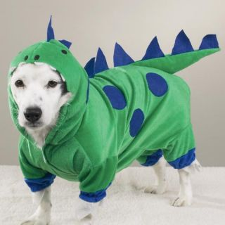 Dog Pet Halloween Costume Dinosaur Green Godzilla Dragon XS