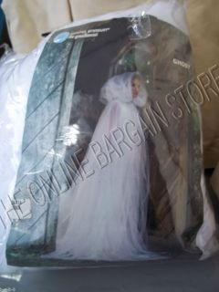 Grandin Road Martha Stewart Halloween White Ghost Costume Wedding