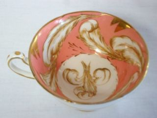Royal Grafton Fine Bone China Cup and Saucer K8045 Pink Feathers Gold