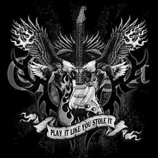 Play It Like You Stole It Gothic Guitar New T Shirt s M L XL 2X 3X 4X
