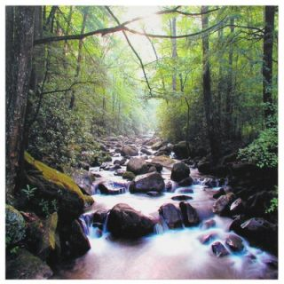 Furniture River of Life Canvas Wall Art   19.75 x 19.75