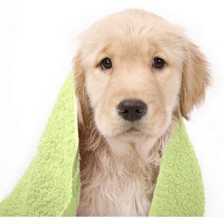 Soft Touch Popcorn Textured Smart Dry Pet Towel Set   PET65PW198