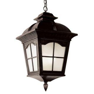 TransGlobe Lighting One Light Outdoor Large Hanging Lantern in Black