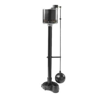 Wayne Water Systems 1/2 HP Thermoplastic Pedestal Pump