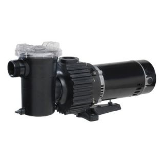 Wayne Water Systems 1 HP Pool Pump