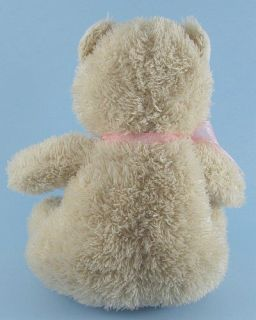 10 ACMI Sugar Loaf Happy 10th Anniversary Plush Teddy Bear Stuffed